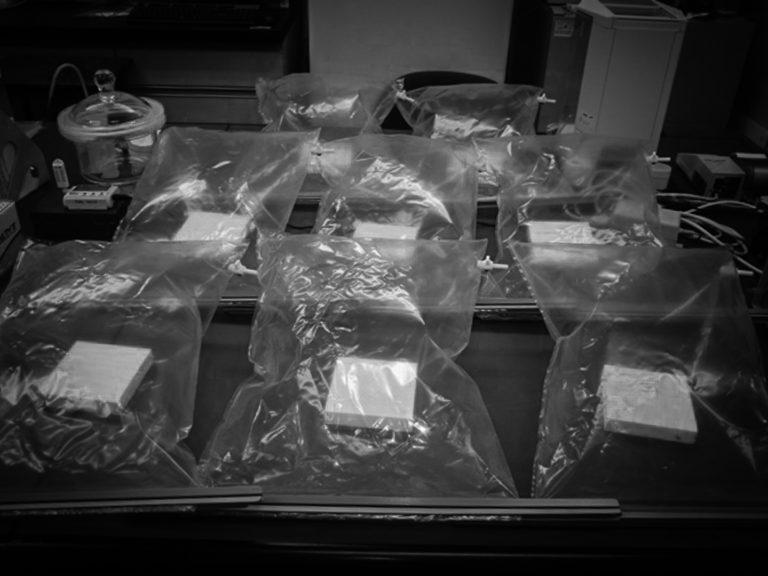 sampling bag